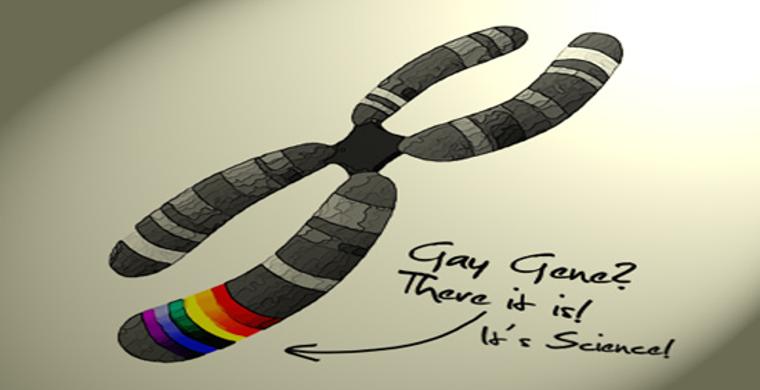 Homosexuality due to genetics